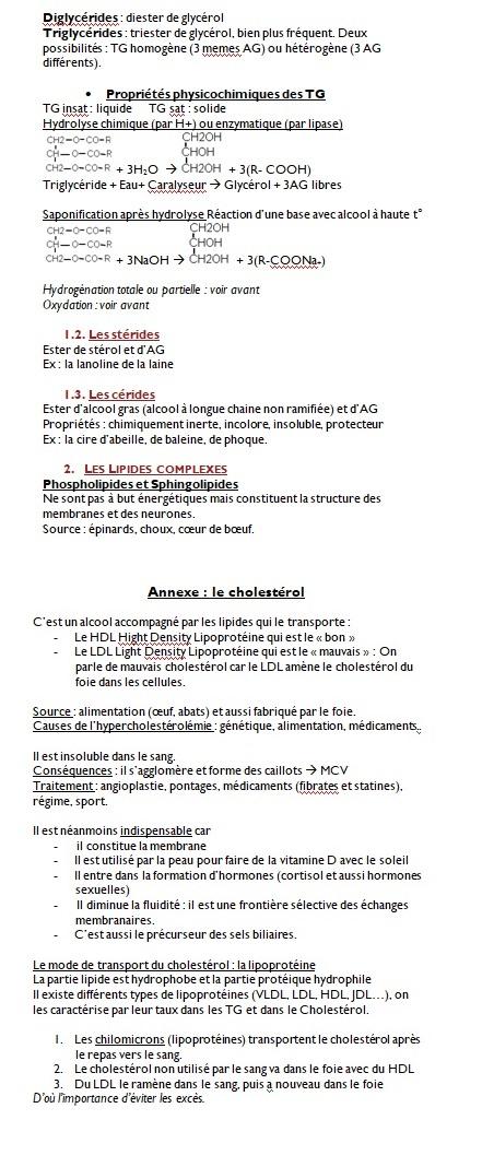 Lipides 6